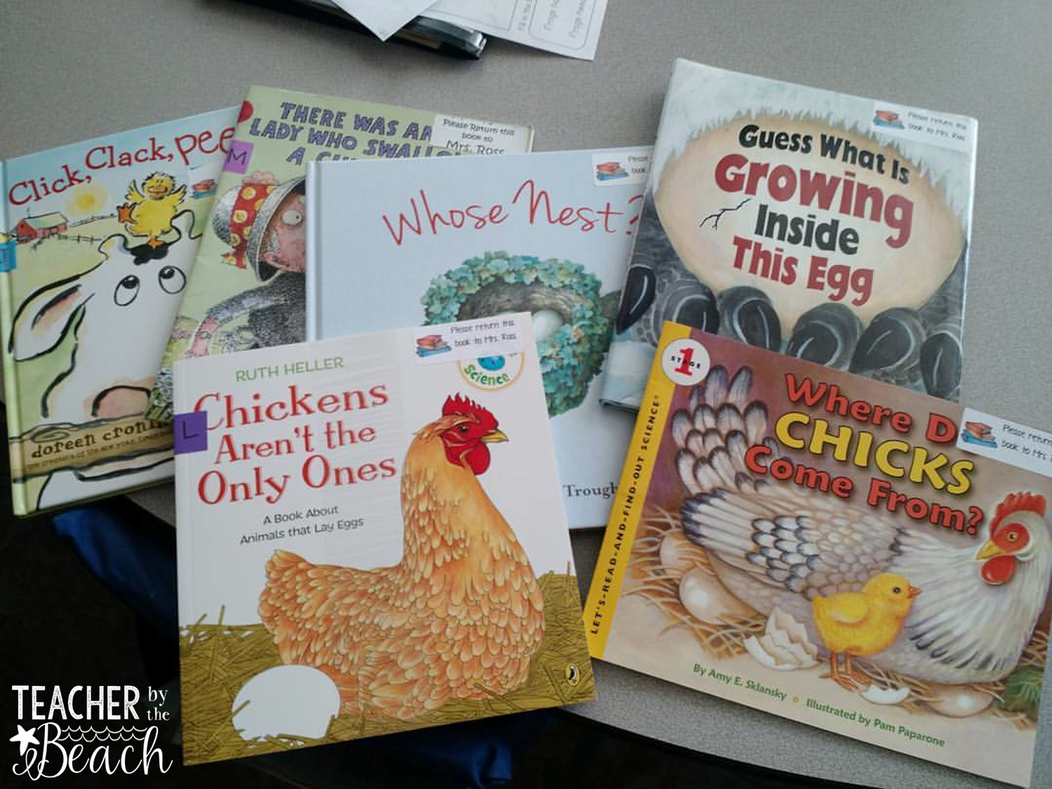 Printable Oviparous Animals Inferencing And Eggs Bloglovin Oviparous Animals Inferencing And Eggs The Teachers Cauldron