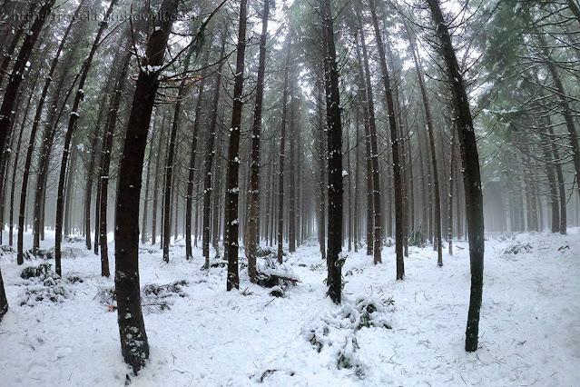 Belgium Winter Weather
