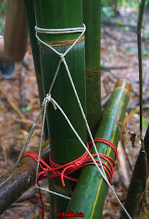 Top survival tip for lashing bamboo