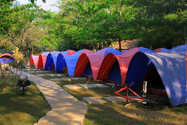 GREEN CORAL | Beach Camp Tanjung Lesung
