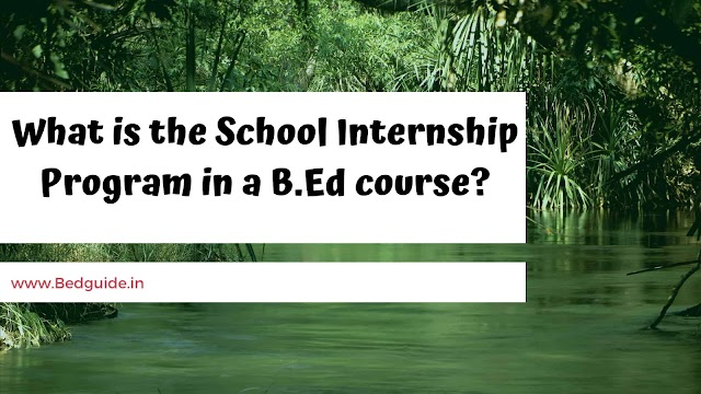 What is the School Internship Program in a B.Ed course?