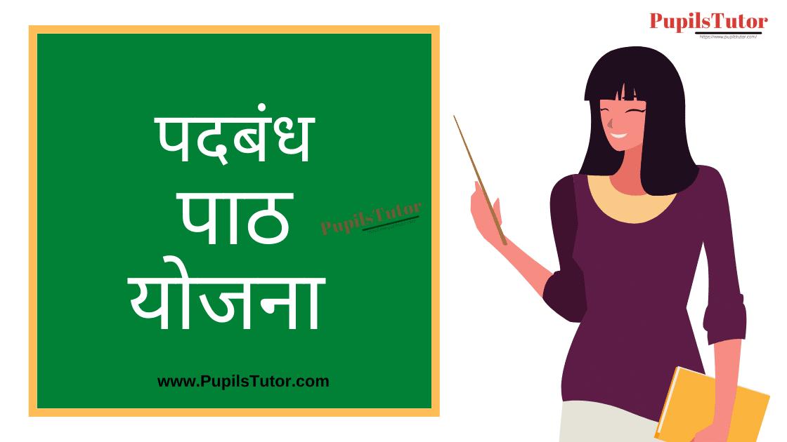 Padbandh Lesson Plan in Hindi for B.Ed/DELED | पदबंध पाठ योजना | Padbandh Lesson Plan