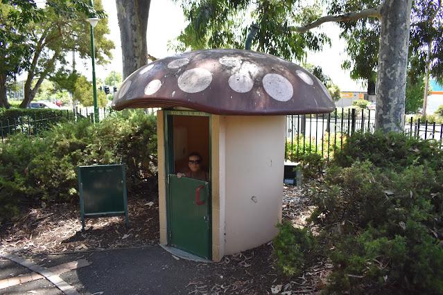 BIG Mushroom Toilet   Launceston City Park