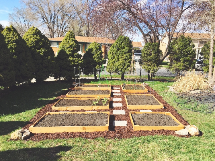 Raised Bed Garden Layout // www.thejoyblog.net