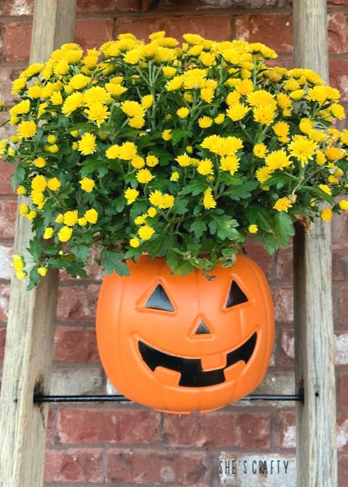 Halloween Home Tour - pumpkin bucket mum holder  |  She's Crafty