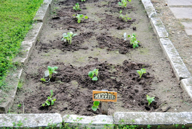 Spring Garden Planting and Blooms 2019 at Miz Helen's Country Cottage
