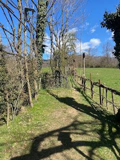 A path in Valle del Rino, above Petosino.