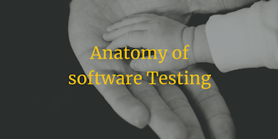 Anatomy of software Testing