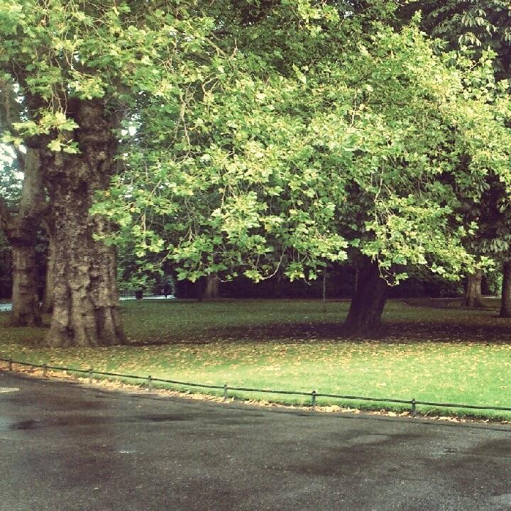 St. Stephen's Green Park Dublin Ireland