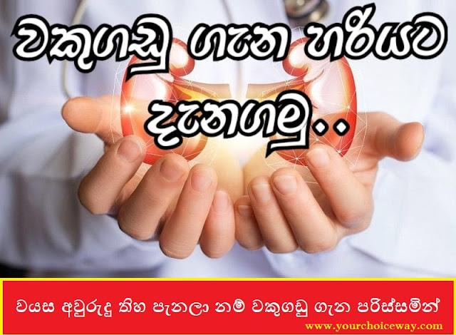 වයස අවුරුදු තිහ පැනලා නම් වකුගඩු ගැන පරිස්සමින් ( Be careful about the kidneys If You Are Over Thirty Years Old ) - Your Choice Way