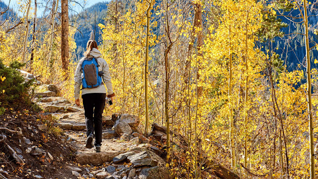 Woman hiking in the autumn