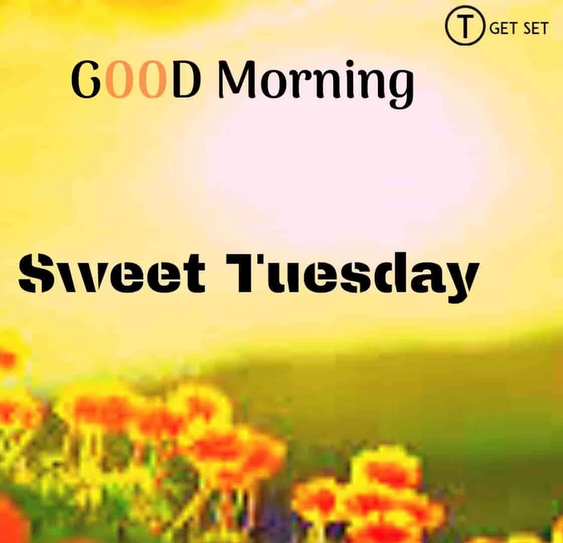 good-morning-and-sweet-tuesday