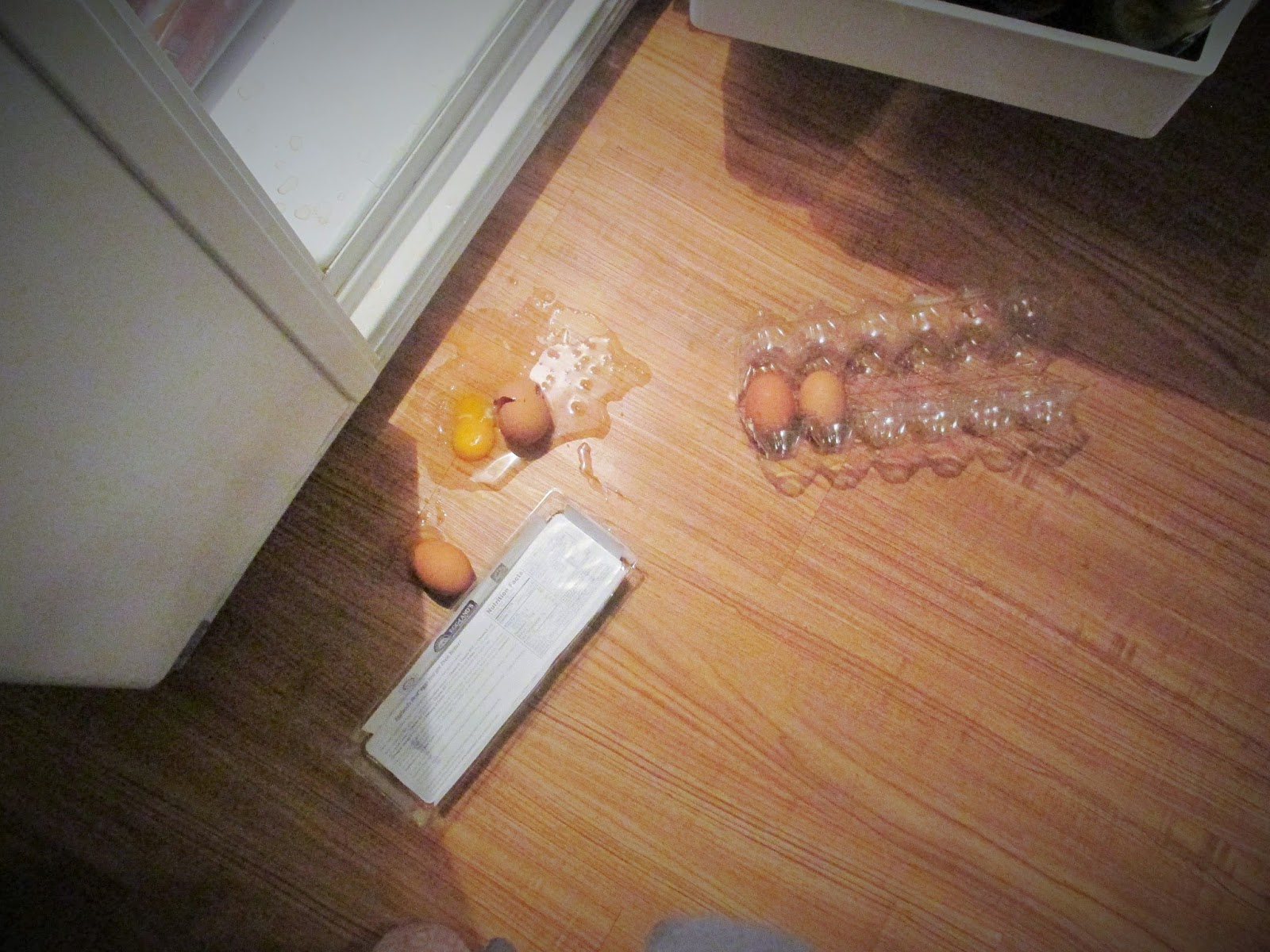 dropped dozen eggs by my refrigerator