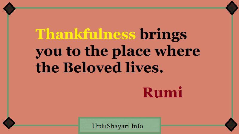 Mawlana Jalal-al-Din Rumi on gratitude, quotes English