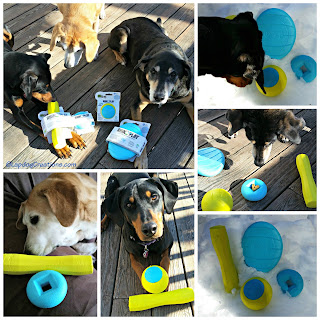 rescue dogs with godog rhinoplay toys