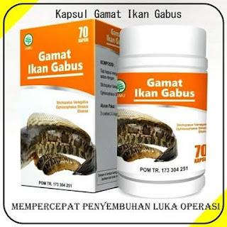 JUAL KAPSUL GAMAT IKAN GABUS   HUB. FARIKHIN 0856.4229.2014