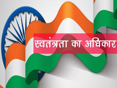 स्वतंत्रता का अधिकार अनुच्छेद 19-22  |Right to freedom in Hindi