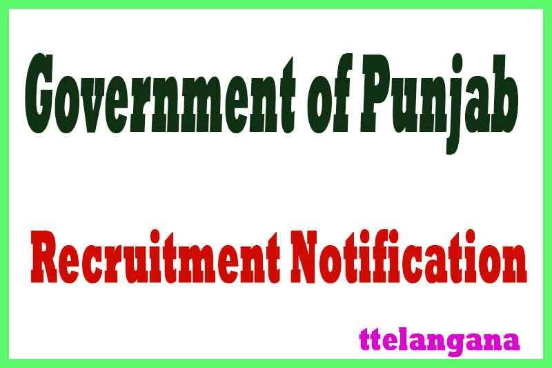 Government of Punjab Recruitment Notification