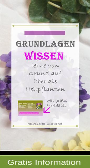 https://wegeinsich.blogspot.com/search/label/Grundlagen%20Wissen