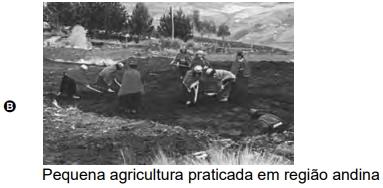 Pequena agricultura praticada em região andina