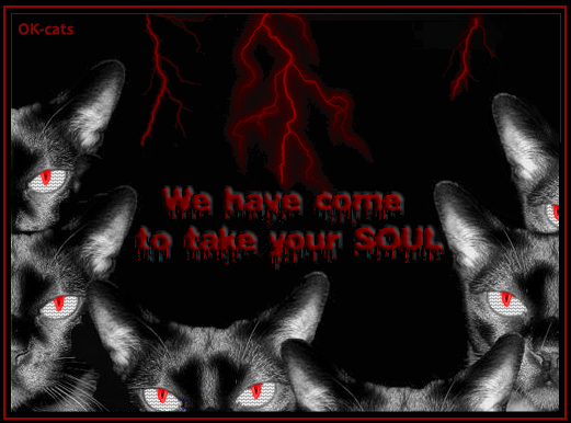 Photoshopped Cat Picture • Creepy night Basement cats have come to take your SOUL, you're dead!