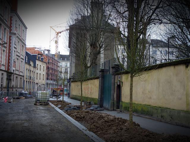 Les arbres viennent d'être installés... Vendredi 28 Février