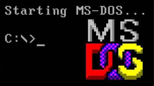 1981. MS-DOS