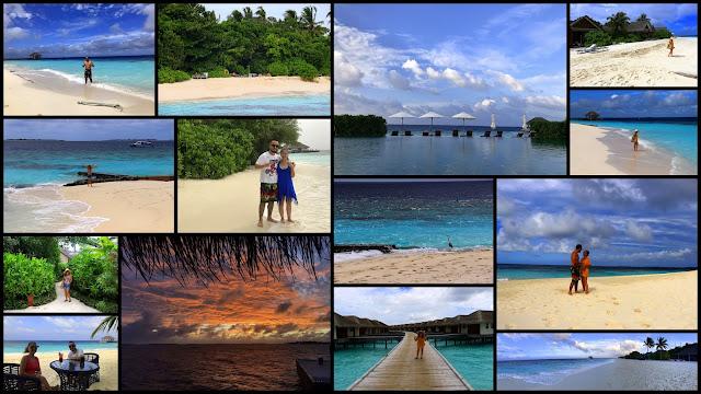 Maldivler, maldivler dalış, tropikal tatil, kış tatili, tüplü dalış, blogger, ankara blogger, maldiver gezi notları, maldivler blog, hint okyanusu, manta, manta ray, su altı, su altı dünyası, köpek balığı