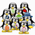 Linux Based Operating Systems