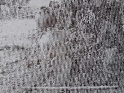 Gambar Situs Batu Wayang Di Gunung Subang Kuningan