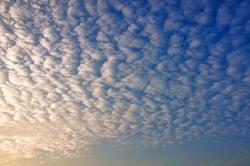 Schäfchenwolken am Nachmittag...