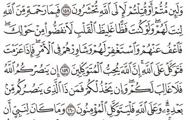 Tafsir Surat Ali Imron Ayat 156, 157, 158, 159, 160