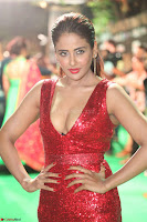 Parul Yadav in Sleeveless Deep Neck Red Gown at IIFA Utsavam Awards March 2017 072.JPG