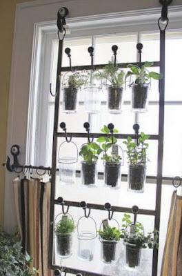idées de jardin d'herbes arrière-plan du bureau