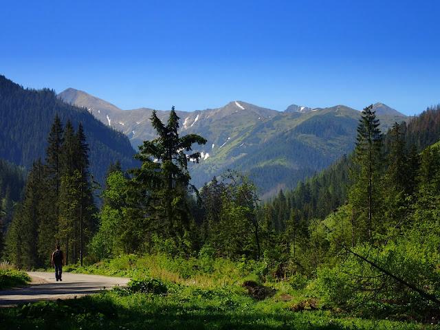 Dolina Chochołowska - widoki na Tatry Zachodnie