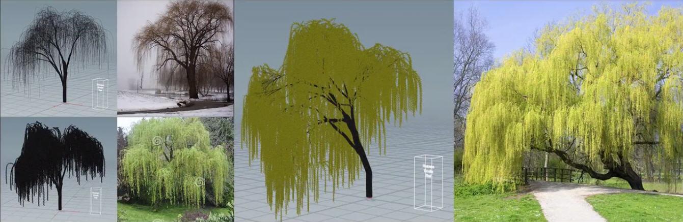 Making Procedural Realistic Tree R&D In Houdini   CG TUTORIAL