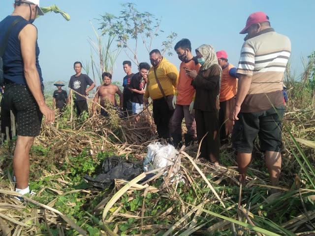 """Mojokerto - Pada hari Rabu (30/9/2020) Gufron Pemilik lahan Tebu di Dusun Kedawung Desa Gemekan Kecamatan Sooko Kabupaten  Mojokerto mendapatkan laporan dari pekerjanya jika pada saat bekerja di lahan tebu miliknya, tiba-tiba ditemukan sesosok mayat.   Mendapatkan laporan tersebut, Gufron langsung melihat di tempat kejadian untuk memastikan laporan tersebut. Setelah memastikan kebenarannya, Gufron langsung melaporkan kejadian ini ke Abdul Ghofur selaku Kepala Dusun Kedawung.   Setelah Kepala Dusun Kedawung memastikan di Lokasi Kejadian, Kepala Dusun Kedawung langsung melaporkan kejadian ini ke Polse Sooko.  Saat di lokasi kejadian, Kapolsek Sooko, AKP Amat, S.H., M.H. mengatakan jika saat ini kami masih menunggu dari TIM Inafis Polres Mojokerto.  """"Kami belum tau jenis kelamin maupun usia korban. Yang jelas saat ini mayat tersebut sudah tulang belulang, memakai kaos dan celana. Kami sudah tanya ke Pak Polo maupun Pak Lurah, tali ternyata tidak ada warga sekitar sini yang merasa kehilangan anggota keluarganya. Jadi bisa dipastikan korban bukan merupakan warga Desa Gemekan, Kecamatan Sooko Kabupaten Mojokerto,"""" ujarnya.  Sementara itu, menurut Jaenal yang merupakan Relawan Birunya Cinta mengatakan jika Mayat tersebut berjenis kelamin perempuan. Perkiraan umurnya 40 tahun. Bagi yang merasa kehilangan anggota keluarganya dengan ciri ciri tersebut silahkan menghubungi Polres Mojokerto yang ada di Jalan Raya Mojosari.   """"Untuk mayatnya saat ini telah dibawa ke RSUD Prof. Dr. Soekandar Mojosari,"""" ujarnya. (Jayak)"""