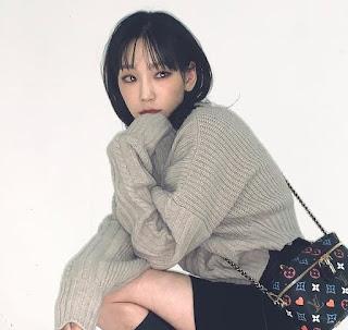SNSD Taeyeon Louis Vuitton Bag