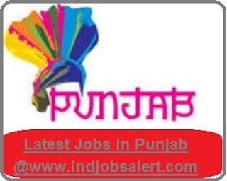 Govt jobs in Punjab 2017-18, Punjab recruitment 2017 notification, Punjab sarkari naukri 2017, jobs in punjab, latest private jobs in punjab