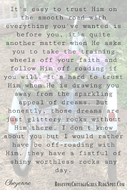 Take the training wheels off our faith, Growing in your faith, Trusting God, Learning to Trust God by Rosevine Cottage Girls