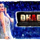 Dhadi webseries  & More