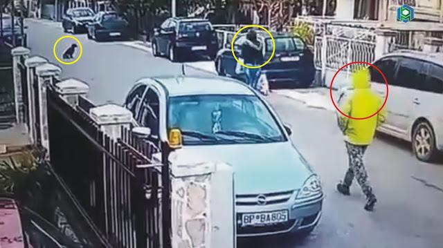 Allahu Akbar, Dirampok di Tengah Jalan, Tiba-Tiba Seekor Anjing Melindungi Wanita Berjilbab Ini