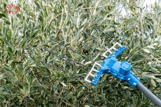 Χάθηκε μηχάνημα συγκομιδής για ελιές - Δίδεται αμοιβή