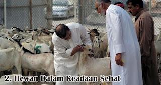 Hewan Dalam Keadaan Sehat merupakan salah satu kriteria hewan yang dapat disembelih saat Idul Adha