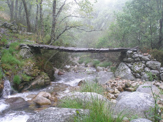 puente en la garganta de san martín