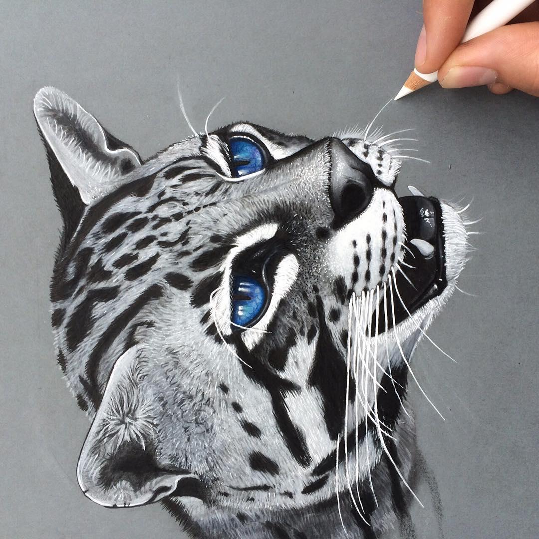 03-Ocelot-Simon-Balzat-Colored-Pencils-make-Beautiful-Drawings-www-designstack-co