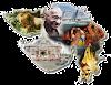 ગુજરાત જનરલ નોલેજ: એક અભ્યાસ