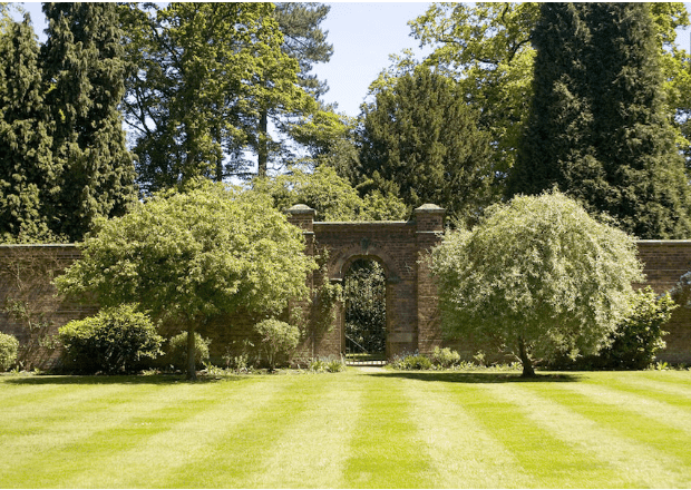 Tips Design Stripe Your Lawn