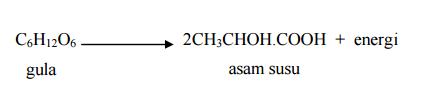 Reaksi pernapasan anaerob