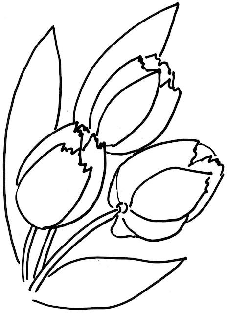 Mewarnai Gambar Bunga Tulips 1
